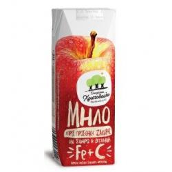 Χριστοδούλου ατομ. μήλο 250ml