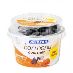 Μεβγάλ γιαούρτι harmony Gourmet καραμέλα αλατ. 165γρ.